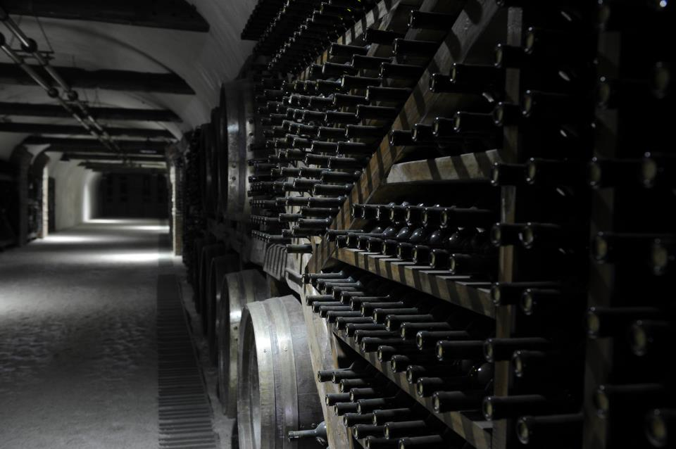 Wine Tunnel 2